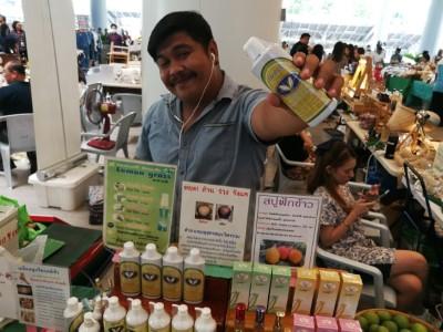 บรรยากาศงานตลาดสีเขียวที่ SCG ปูนซิเมนต์ไทย บางซื่อ